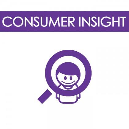 Consumer-insight2